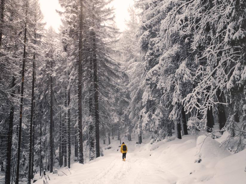 Winterliche Harzer Natur genießen