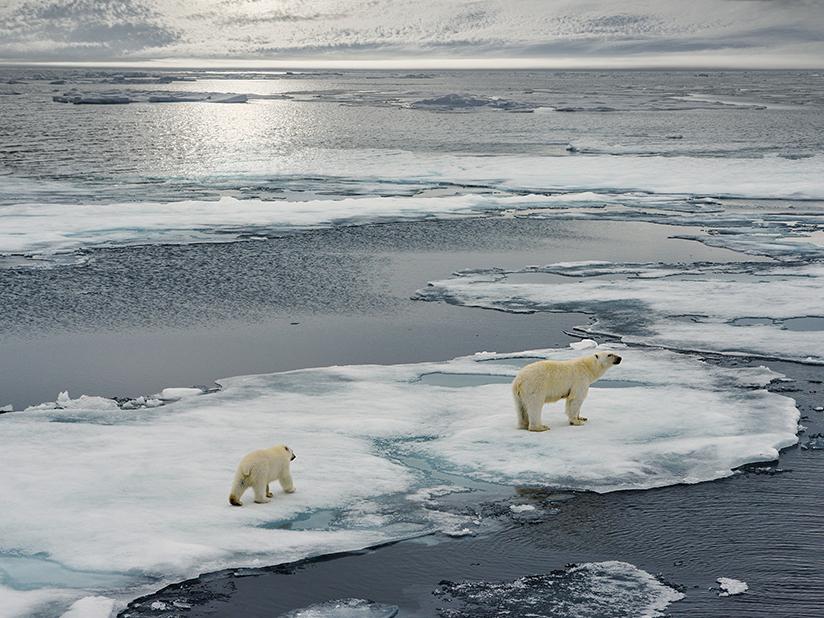 Earth Hour als Zeichen für Klimaschutz