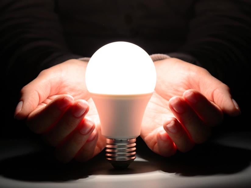 Stromfakt 4: Glühwürmchen waren die effizientesten Lichterzeuger – bis jetzt.