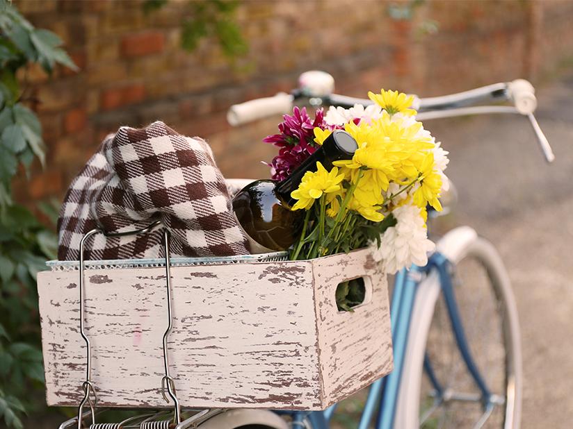Flaschen raus aus dem Fahrradkorb
