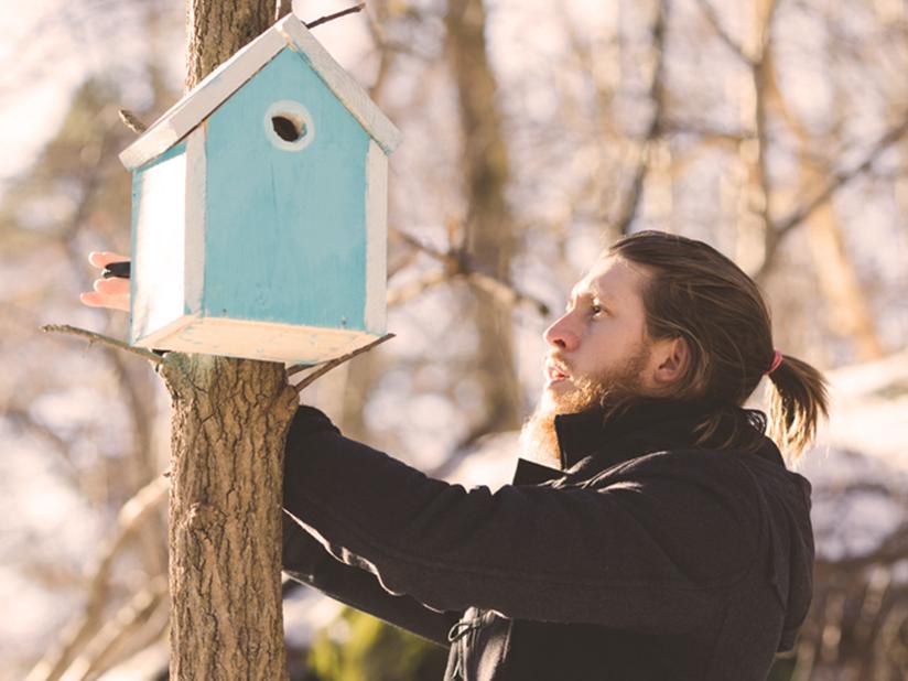 Vogelhaus basteln als Winter-Futterstelle