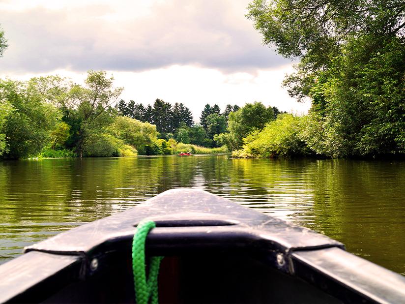 Kanufahren für Naturliebhaber durch sattes Grün