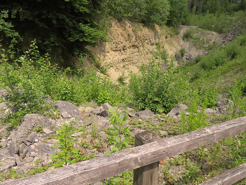 Geschichte anfassen im Erlebnis-Steinbruch Hainholz